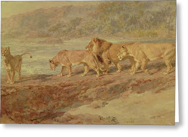 On The Bank Of An African River Greeting Card by Briton Riviere