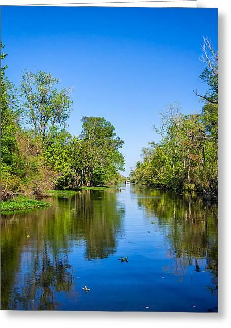 Moss Green Greeting Cards - On the Bayou Greeting Card by Steve Harrington