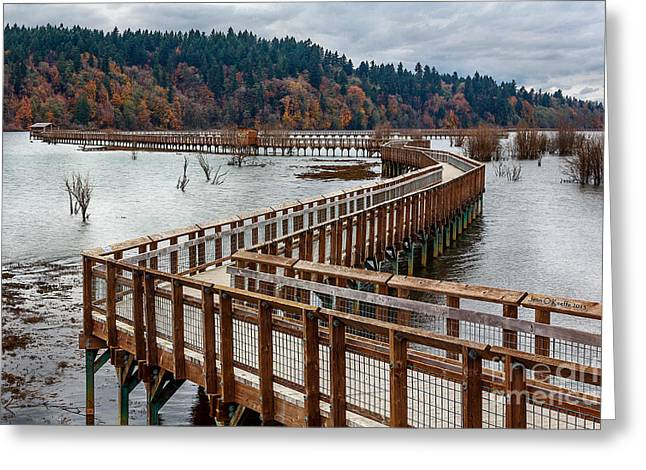 South Puget Sound Greeting Cards - On The Boardwalk  Greeting Card by Jean OKeeffe Macro Abundance Art