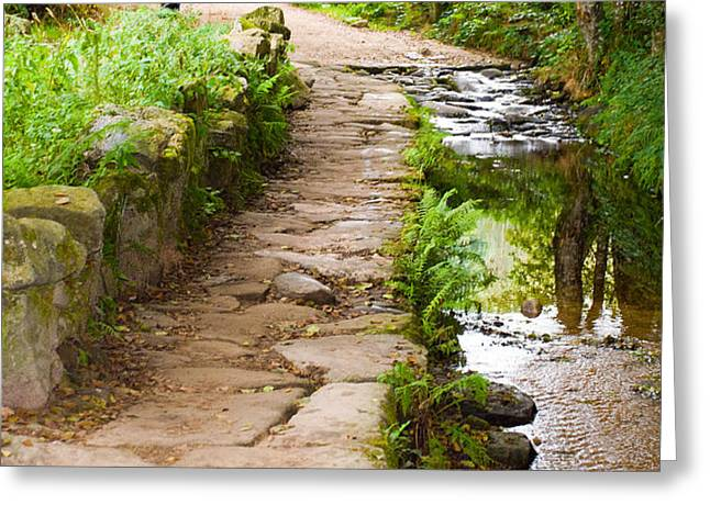 On The Camino A Reflective River Greeting Card by Dave Byrne
