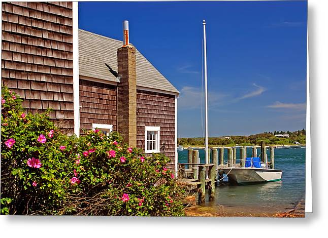 Clapboard House Greeting Cards - On the Cape Greeting Card by Joann Vitali