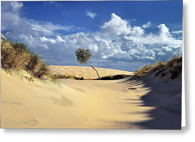 Sanddunes Greeting Cards - On the dune Greeting Card by Jan Sieminski