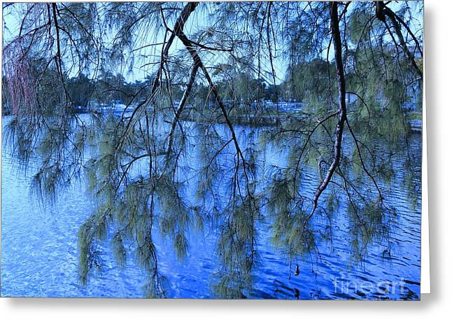 Overhang Greeting Cards - On the Edge ... of the Lake  Greeting Card by Debb Starr