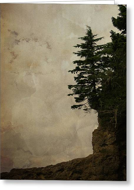 On The Edge Greeting Card by Marilyn Wilson