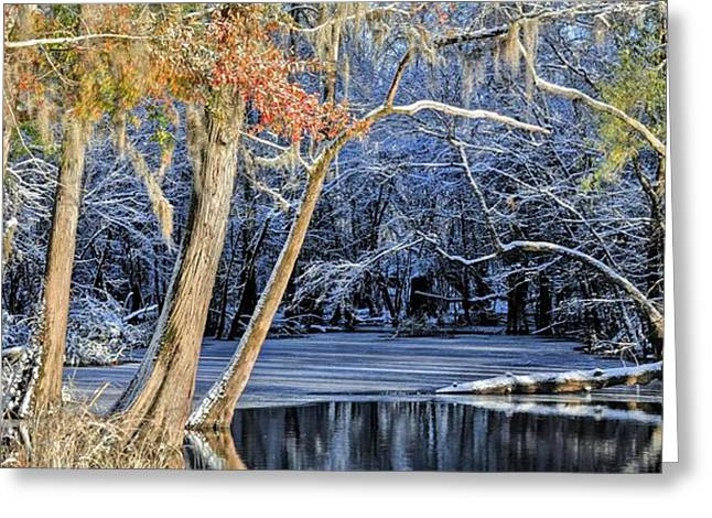 Cape Fear River Greeting Cards - On the Edge of Winter Greeting Card by JC Findley