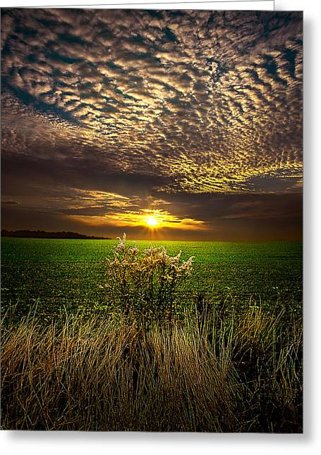 Geographic Greeting Cards - On the Edge Greeting Card by Phil Koch