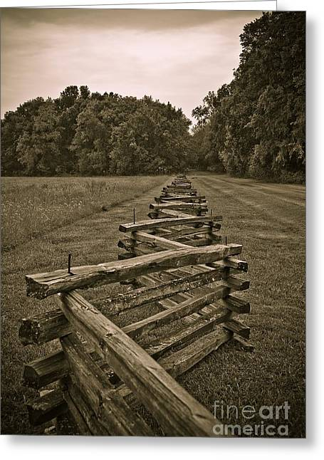 Fence Row Greeting Cards - On the Fence Greeting Card by Charles Dobbs