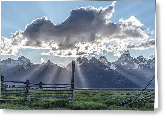 Color Colorful Greeting Cards - On The Fence Greeting Card by Jon Glaser