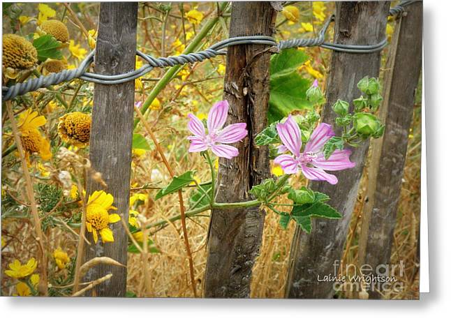 On the Fence Greeting Card by Lainie Wrightson