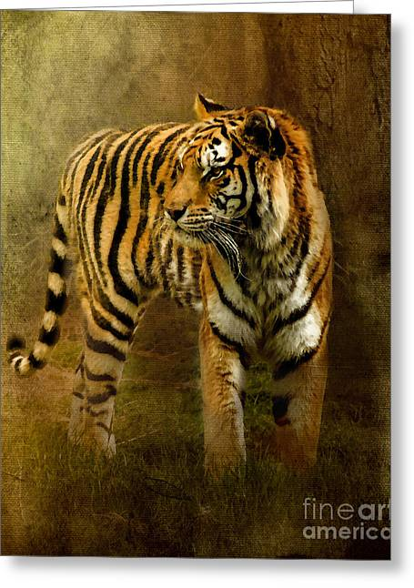 Tiger Digital Art Greeting Cards - On The Hunt Greeting Card by Betty LaRue