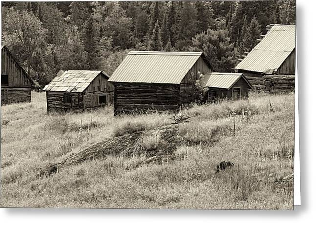 Barn Digital Greeting Cards - On The Opeongo Pioneer Road Greeting Card by Phill  Doherty