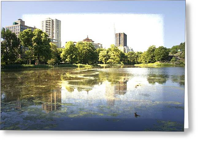 Pond In Park Greeting Cards - On The Pond Greeting Card by Alice Gipson