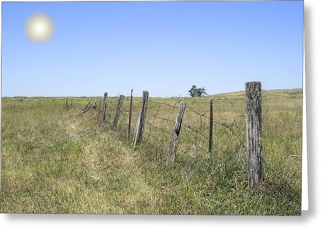 Old Fence Posts Greeting Cards - On The Range Greeting Card by Daniel Hagerman