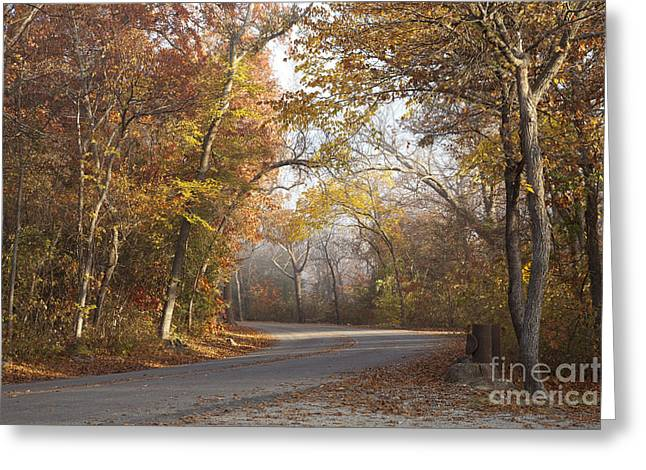 Mystical Landscape Greeting Cards - On the Road Greeting Card by Iris Greenwell