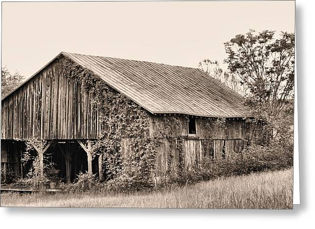 Tin Roof Greeting Cards - On the Road To Flint Hills Greeting Card by JC Findley