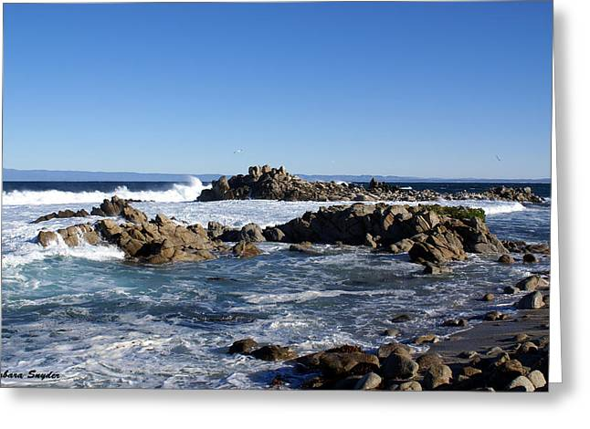 Cambria Digital Greeting Cards - On The Rocks Greeting Card by Barbara Snyder