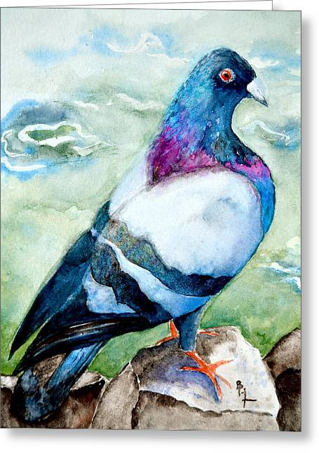 Feral Pigeon Greeting Cards - On The Rocks Greeting Card by Beverley Harper Tinsley