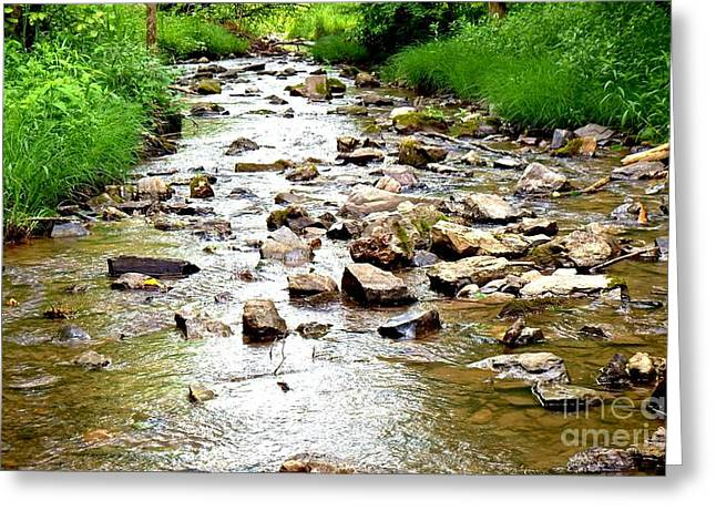 Canoe Photographs Greeting Cards - ON THE ROCKS in color Greeting Card by Chad Thompson