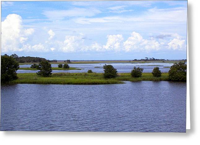 Cedar Key Greeting Cards - On the Saltwater Flats Greeting Card by Sheri McLeroy