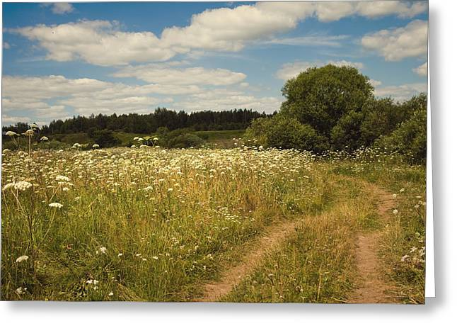 Village Life Greeting Cards - On the Summer Meadow II. Russia Greeting Card by Jenny Rainbow