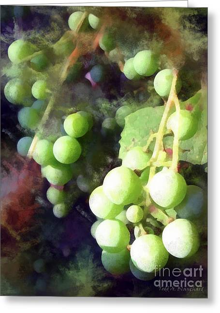 Grape Vine Digital Greeting Cards - On The Vine Greeting Card by Todd A Blanchard