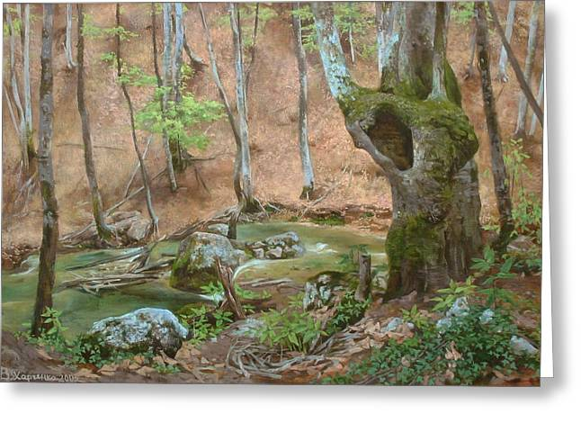 Stream Greeting Cards - On the way to a falls Greeting Card by Victoria Kharchenko