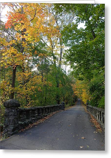 The Nature Center Greeting Cards - On the way to nature Greeting Card by Ceil Harrigan