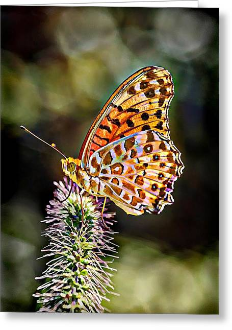 On The Wings Of A Butterfly... Greeting Card by Lilia D