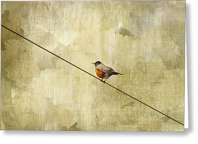 Birding Greeting Cards - On The Wire Greeting Card by Rebecca Cozart