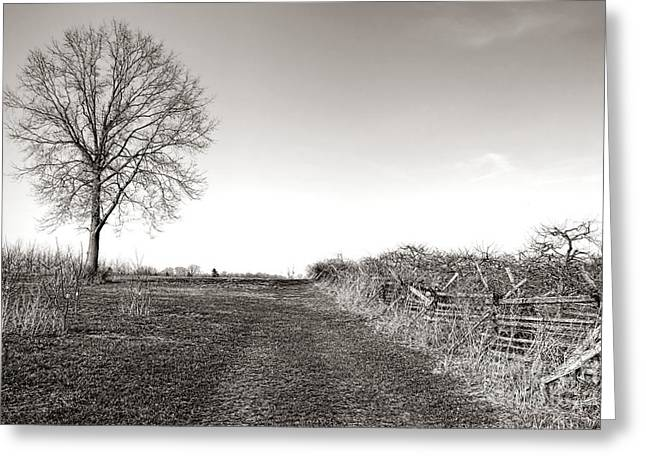 New Jersey History Greeting Cards - Once a Battlefield Greeting Card by Olivier Le Queinec