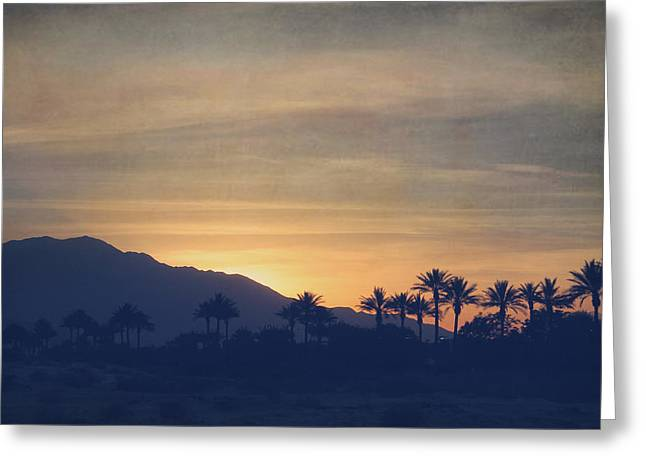 La Quinta Greeting Cards - Once Again Greeting Card by Laurie Search