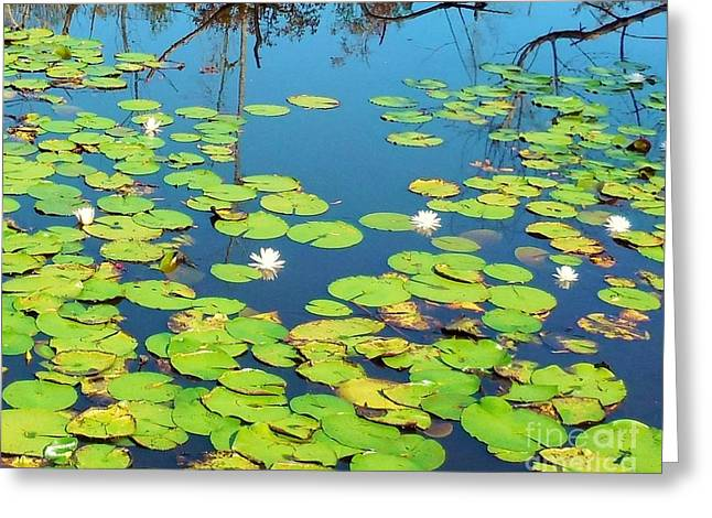 Once Upon A Lily Pad Greeting Card by Eloise Schneider