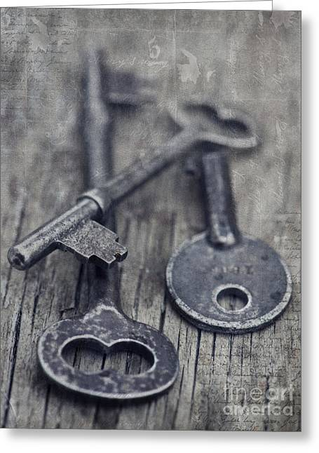 Grey Fine Art Greeting Cards - Once Upon A Time There Was A Lock Greeting Card by Priska Wettstein