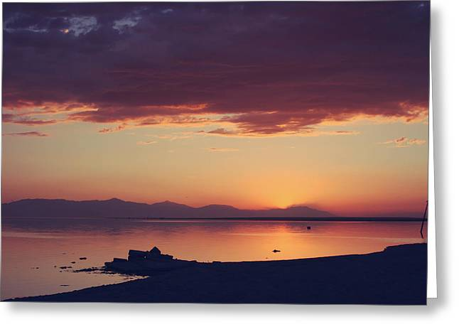 Salton Sea Greeting Cards - Once You Have Found It Never Let It Go Greeting Card by Laurie Search