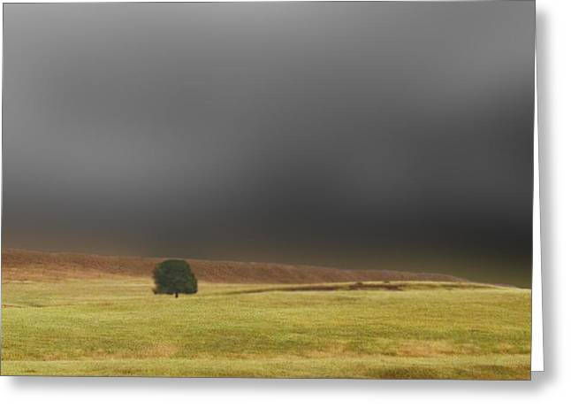 Prairies Photographs Greeting Cards - One Greeting Card by Don Spenner