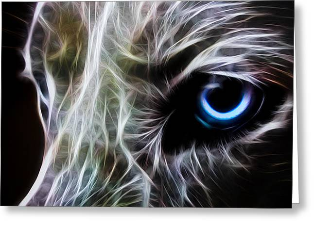 Canine Digital Art Greeting Cards - One Eye Greeting Card by Aged Pixel