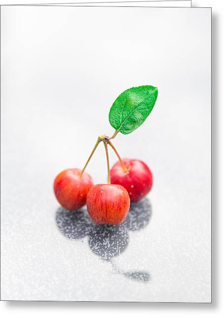 Apple Art Greeting Cards - One Leaf Three Crapapples Greeting Card by Semmick Photo