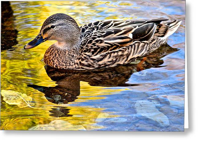 Wing Mirror Greeting Cards - One Leaf Two Ducks Greeting Card by Frozen in Time Fine Art Photography
