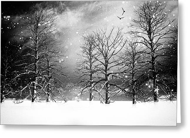 Best Sellers -  - Winter Storm Greeting Cards - One Night In November Greeting Card by Bob Orsillo