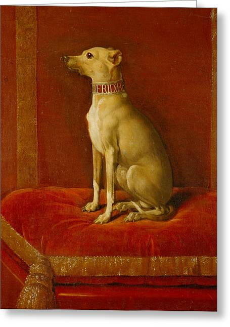 Greyhound Dog Greeting Cards - One of Frederick II Italian greyhounds Greeting Card by German School