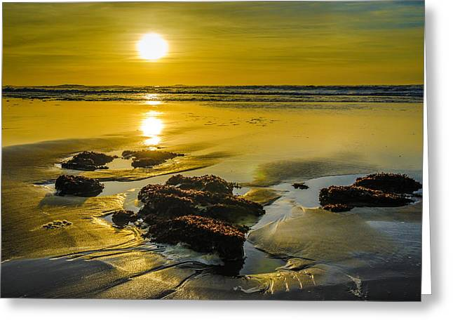 End Of Day Greeting Cards - One Oregon Coast Sunset Greeting Card by Puget  Exposure