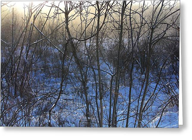 Winter Solstice Greeting Cards Greeting Cards - One Solstice Morning in Palenville the Light Broke Through the Dew Greeting Card by Terrance DePietro