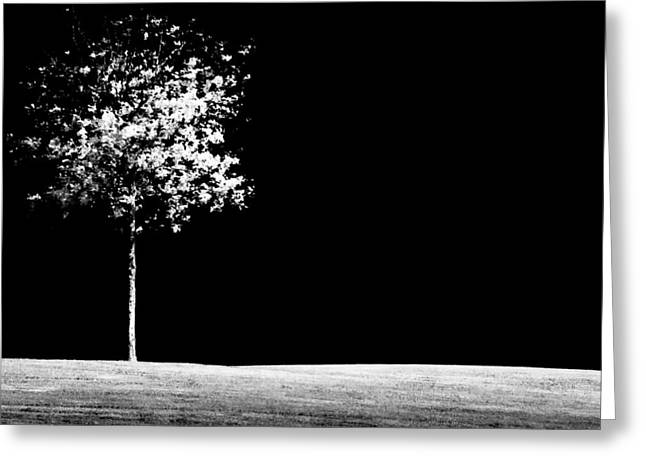 Tree Art Greeting Cards - One Tree Hill Greeting Card by Darryl Dalton