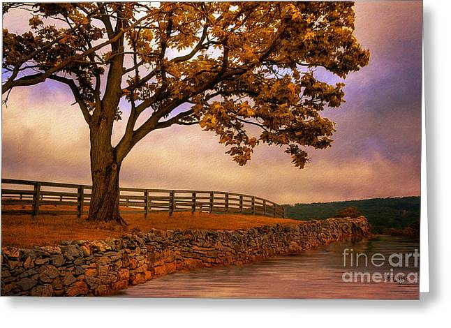 Fall Trees Digital Art Greeting Cards - One Tree Hill Greeting Card by Lois Bryan