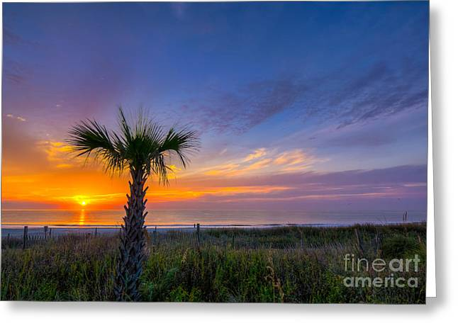 Myrtle Beach Ocean Photography Greeting Cards - One Tree Greeting Card by Matthew Trudeau