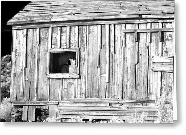 Black History Greeting Cards - One Window Greeting Card by Cat Connor