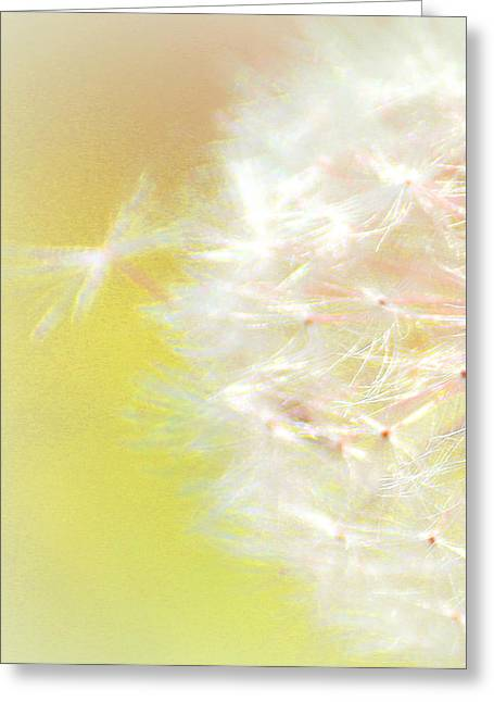 One Wish Greeting Card by  The Art Of Marilyn Ridoutt-Greene