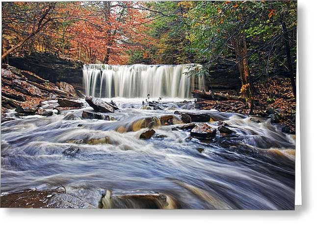 Fall Trees Greeting Cards - Oneida Waterfall Greeting Card by Marcia Colelli