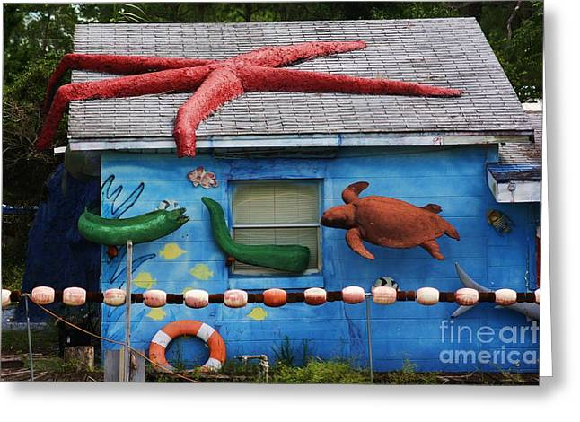 Red School House Greeting Cards - Only in rural Florida Greeting Card by Chuck  Hicks