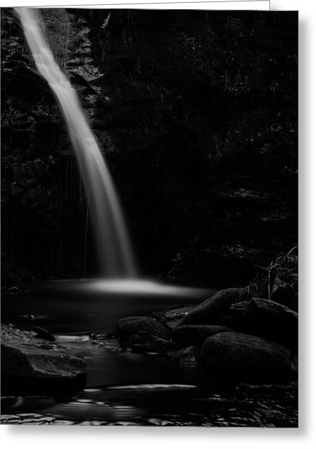 Woods Greeting Cards - Only Light. Greeting Card by Daniel Kay